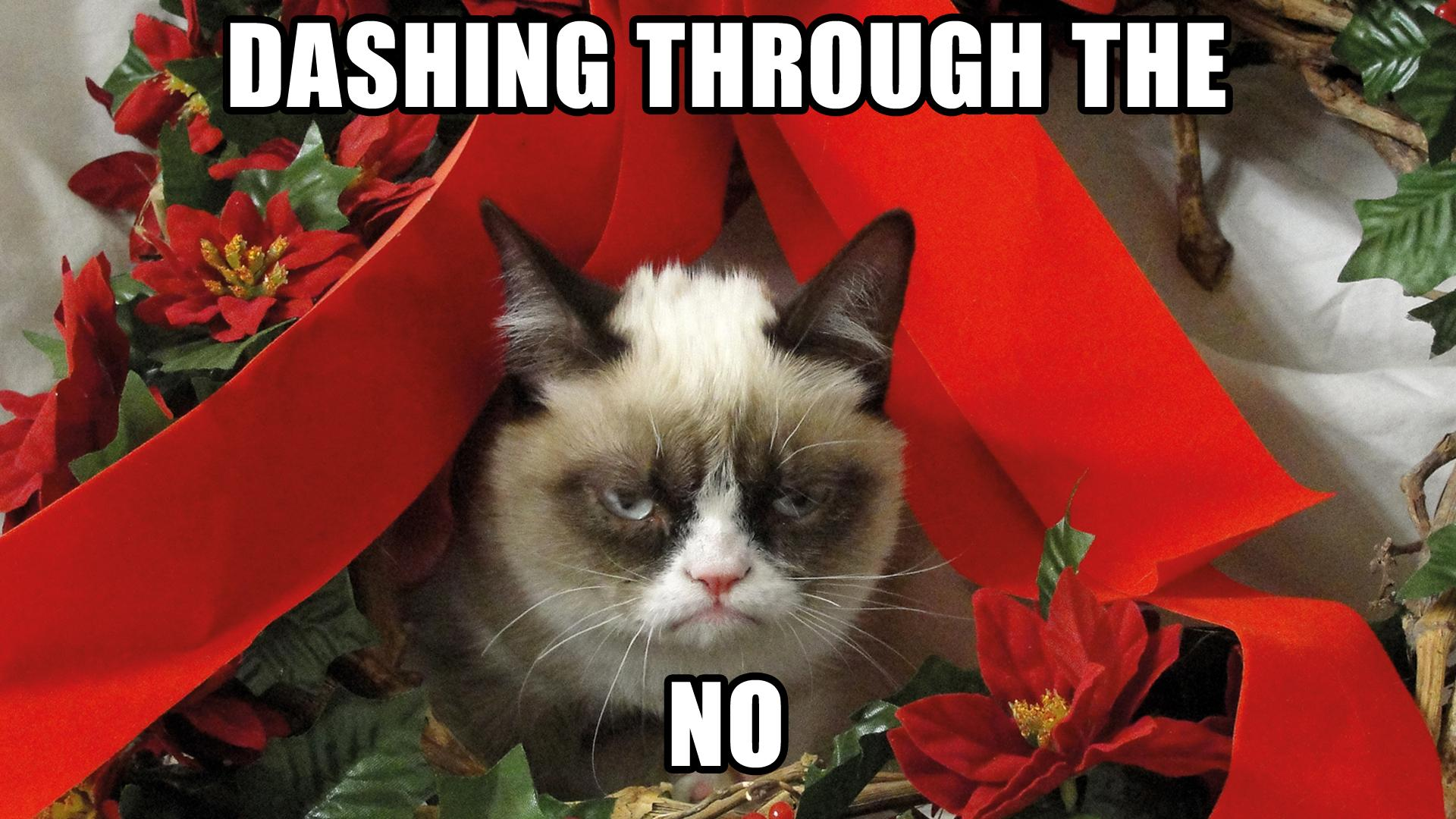 Grumpy Cat Meme Pictures humor funny cats christmas 1920x1080 ...