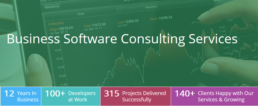 Business Software Consulting.png