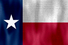 Flags-TX_01.jpg
