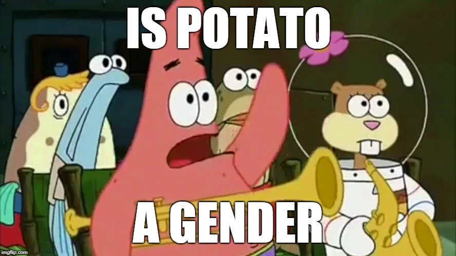 Patrick Is Potato A Gender.jpg