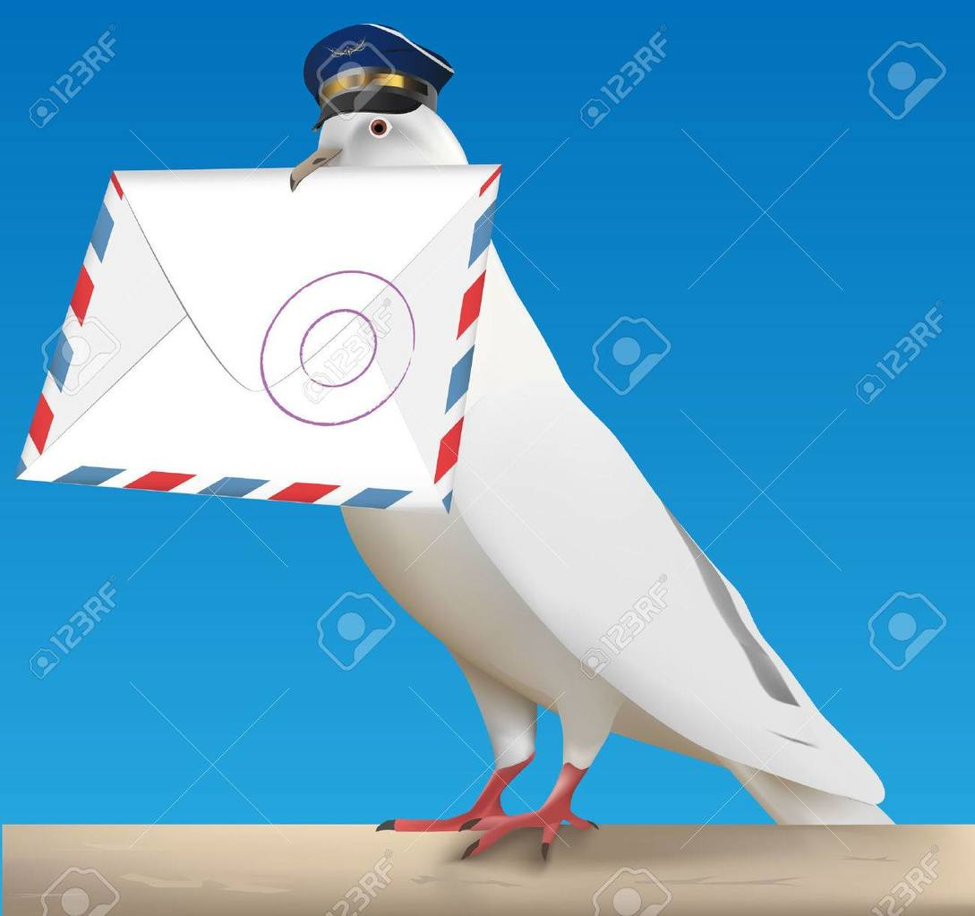 6556480-white-carrier-pigeon-with-pilot-cap-and-letter.thumb.jpg.a38c1a013d504103e137e930fe5f057e.jpg