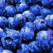 Concered About The Blueberries