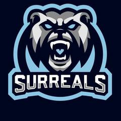 Surreals